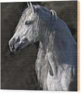 Andalusian Portrait Wood Print
