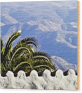 Andalusian View Wood Print