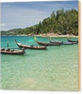 Andaman Coast Wood Print