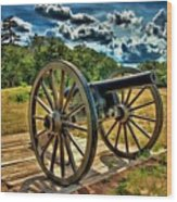 Andersonville Cannon Wood Print