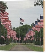 Andersonville National Cemetery Wood Print
