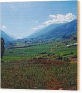 Andes  Wood Print