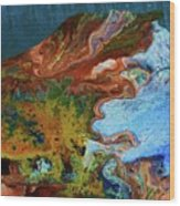 Andes...glacier... Wood Print
