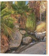 Andreas Canyon Babble Wood Print