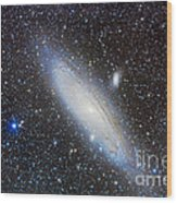 Andromeda Galaxy With Companions Wood Print