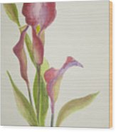 Andy's Calla Lillies Wood Print