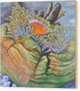 Anemone Coral And Fish Wood Print