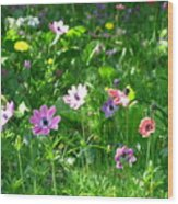 Anemonies Wood Print