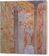 Ange  Petit Trianon Versailles Wood Print