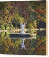 Angel In The Lake - St. Mary's Ambler Wood Print