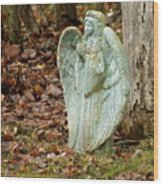 Angel In The Woods Wood Print by Danielle Allard