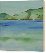 Angel Island Unplugged Wood Print