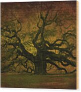 Angel Oak 3 Charleston Wood Print