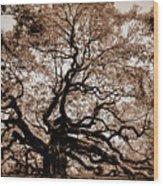 Angel Oak Johns Island Sc Wood Print