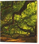 Angel Oak Limbs 2 Wood Print by Susanne Van Hulst