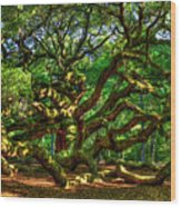 Angel Oak Morning Shadows Charleston South Carolina Wood Print
