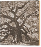 Angel Oak Sepia Wood Print
