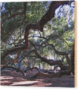 Angel Oak Side View Wood Print