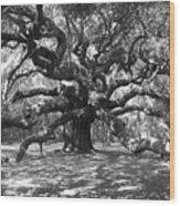 Angel Oak Tree Black And White Wood Print
