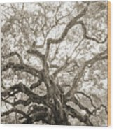 Angel Oak Tree Charleston Sc Wood Print
