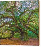 Angel Oak Tree Charleston Sc Wood Print