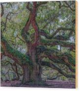 Angel Oak Tree Deeply Rooted History Wood Print