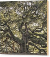 Angel Oak Tree Live Oak  Wood Print