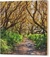 Angel Oaks In Sunshine Wood Print