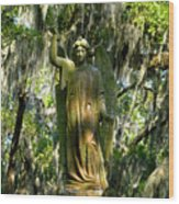 Angel Of Savanna Wood Print