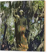 Angel Of Savannah Wood Print