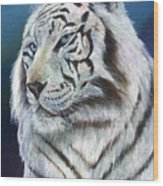 Angel The White Tiger Wood Print