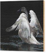Angel Wings 2 Wood Print