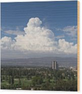 Angeles National Park And Lakeside Golf Club In Southern California Dsc3585sq Wood Print