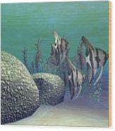 Angelfish Wood Print