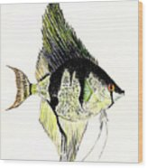 Angelfish Wood Print