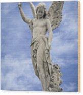 Angelic Peace And Beauty Wood Print