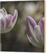 Angelique Peony Tulips 2 Wood Print