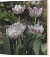 Angelique Peony Tulips Squared Wood Print