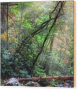 Angels At The River Wood Print