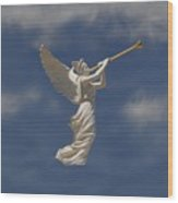 Angels Trumpet Wood Print