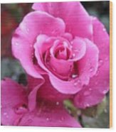 Angle Face Rose Wood Print