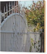 Angled Closeup Of White Washed Iron Gate To Garden Wood Print