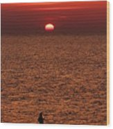 Angler In Summer Sunset Wood Print