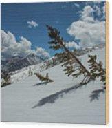 Angles Of The Mountain Wood Print