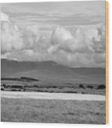 Anglesey Farmland And Distant Hills North Wales Uk Wood Print