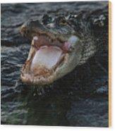 Angry Gator Wood Print