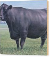 Angus Cow 981 2007 Wood Print