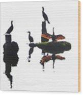 Anhingas Sunning Wood Print