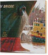 Anichkov Bridge Wood Print