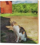 Animal - Cat - The Mouser Wood Print